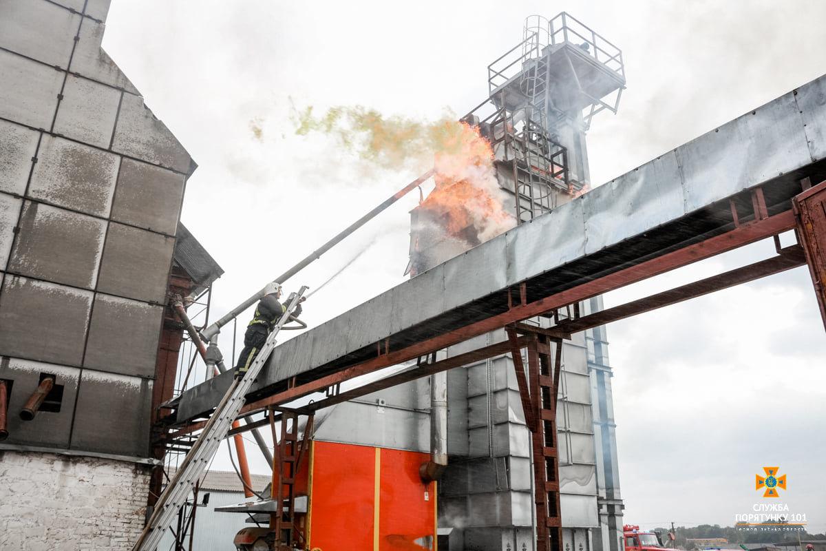 Масштабна пожежа поблизу Тернополя: вогнеборці гасили її понад 4 години (ФОТО), фото-1