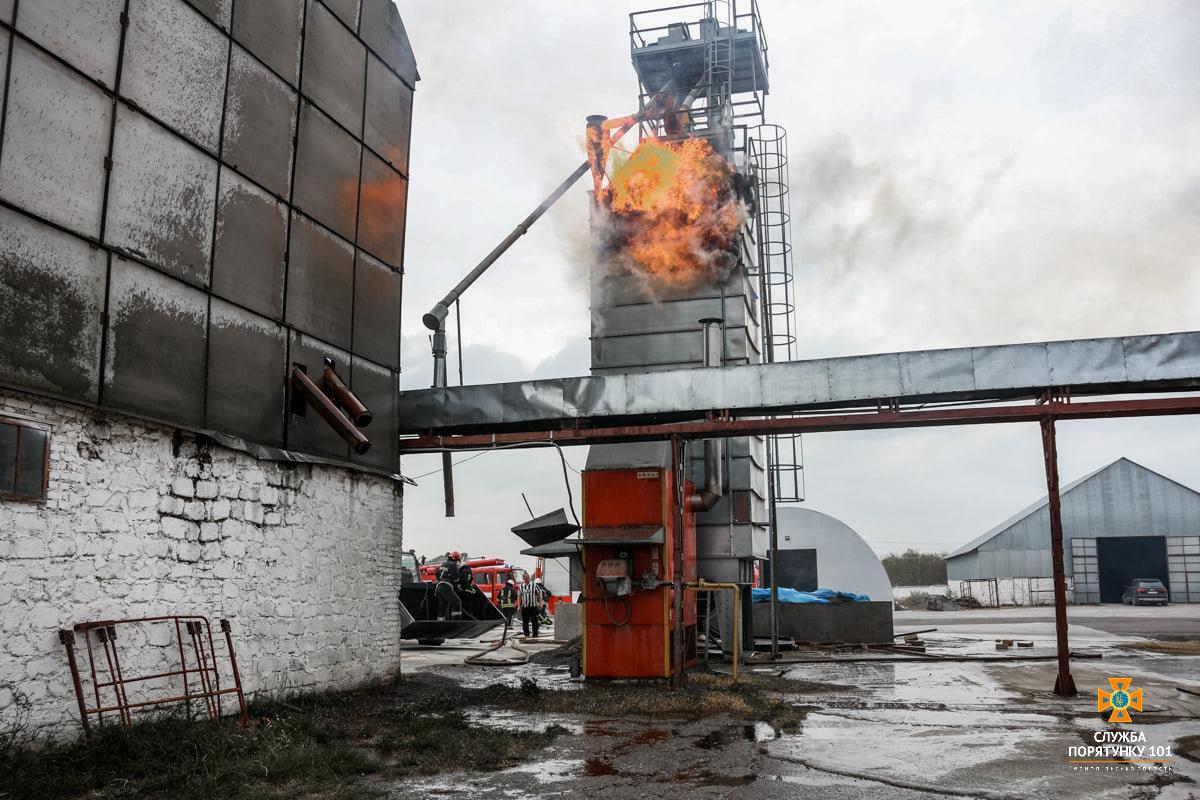 Масштабна пожежа поблизу Тернополя: вогнеборці гасили її понад 4 години (ФОТО), фото-3