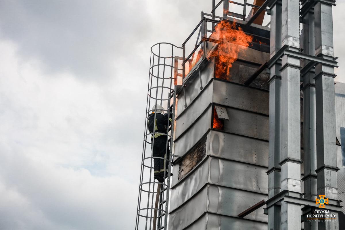 Масштабна пожежа поблизу Тернополя: вогнеборці гасили її понад 4 години (ФОТО), фото-6
