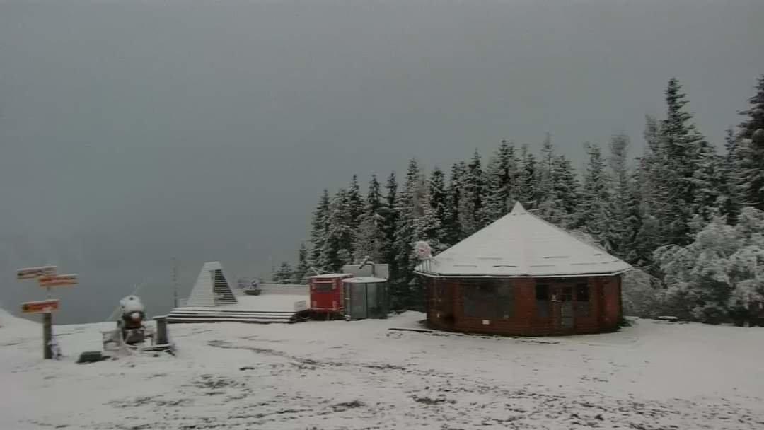 Зима близько: в Карпатах сьогодні мороз і сніг (ФОТО) , фото-3