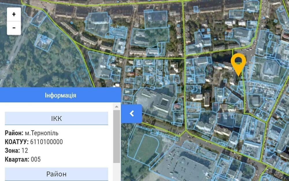 """""""Візьми і зріж"""": поліція знайшла вандалів, котрі підпиляли дерева у центрі Тернополя, фото-3"""