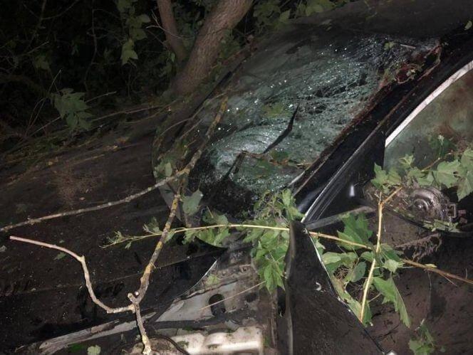 """""""Маму розірвало на шматки, частину тіла закинуло на дерево"""": подробиці жахливої ДТП на Тернопільщині, фото-1"""