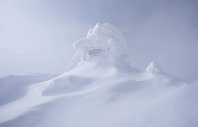Карпати рясно засипало снігом: краєвиди виглядають казково (ФОТОРЕПОРТАЖ, ВІДЕО), фото-4